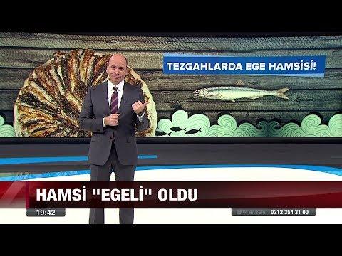 """Hamsi """"Egeli"""" oldu - 29 Aralık 2017"""