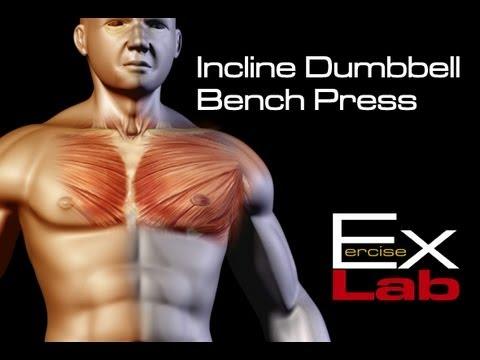 Incline Bench Press Benefits Incline Bench Press