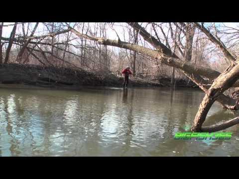 Big Fish 365 Episode 11- Spring Steelhead