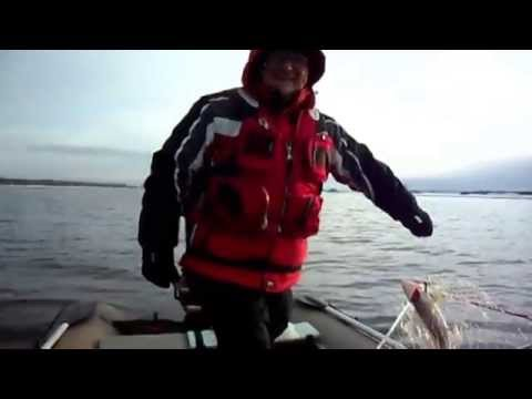 озеро большой беркут рыбалка