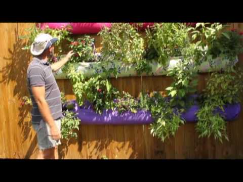 Jim Martin s vertical herb and vegetable garden