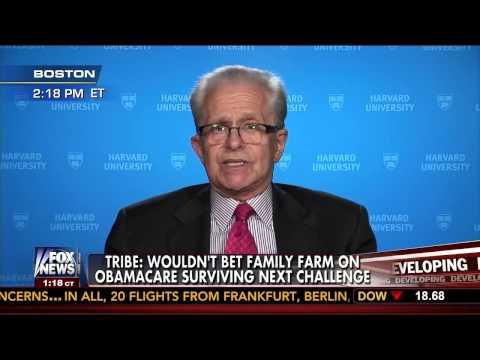 Obama Law Prof: After Halbig Decision 'I Wouldn't Bet' on Obamacare Surviving