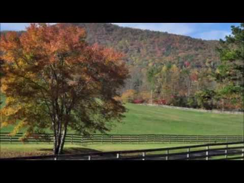 FOR SALE BEAUTIFUL HORSE FARM LOCATED IN MURPHY,NC