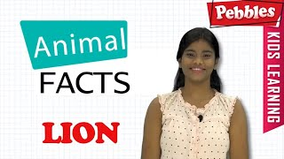 Interesting Animal Facts : Lion | Lion Essay in Bengali | Lion Song | Lion Story | Learn Animals