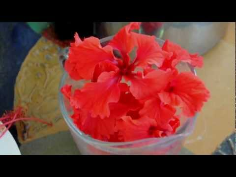 hibiscus tea how to make