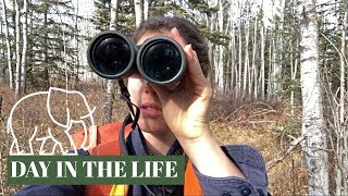 DAY IN THE LIFE of a wildlife biologist & answering YOUR questions