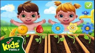 Game vui Bé trồng hoa trái   Dạy bé yêu thiên nhiên   Kids Family Game