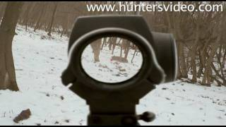 Wild Boar Fever 3 - Hunters Video