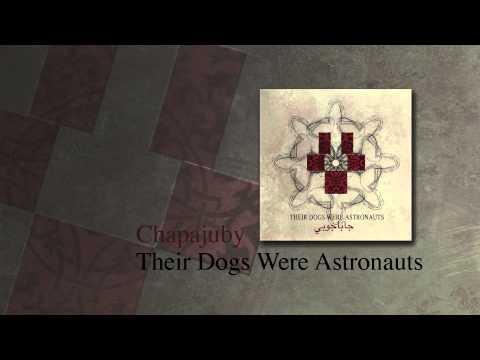 Their Dogs Were Astronauts - Vii