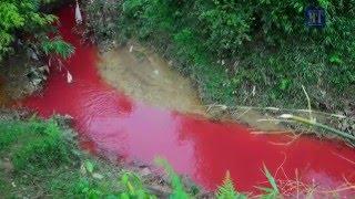 Xuất hiện Dòng suối máu ở Nậm Khếnh Điện Biên