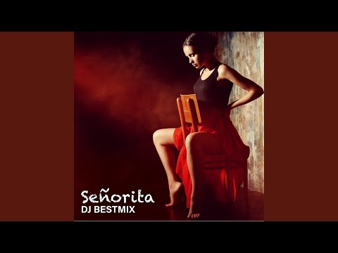 Download Lagu  Señorita Instrumental Ringtone Version Mp3 Free