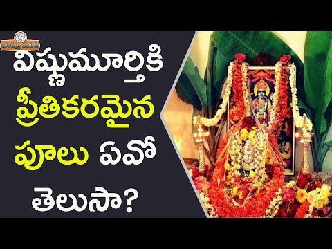 విష్ణుమూర్తి కి ప్రీతికరమైన పూలు ఏవో తెలుసా? || Worship Lord Vishnu With These Flowers | Vishnu Puja