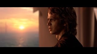 Anakin Reflects