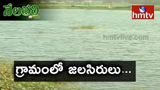 Seetharam Village Farmers Success Story | Water Harvesting Techniques | Nela Talli | hmtv