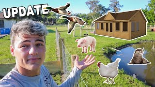 ALL My BACKYARD PROJECTS & ANIMALS!! *UPDATE*