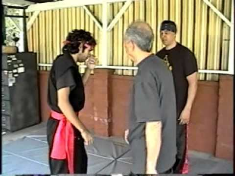 Indonesian Martial Arts.Pencak-Silat training 6 Image 1