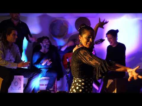 El Mira - Flamenco, rumba, son Latino