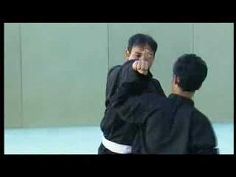 PENCAK SILAT The Ciung Wanara Fighters Image 1
