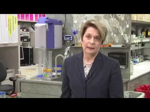 "Master ""Cut-off Switch"" for Cancer-Causing HER2 Protein Located."