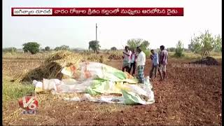Robbery In Agriculture Field | Thieves Robber Sesame In Raguramulakota Village | Jagtial