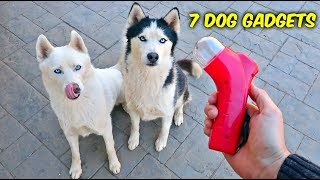 7 Dog Gadgets Put to the Test - Part 6