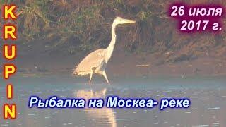 Рыбалка на Москва-реке. 26 июля 2017 г.