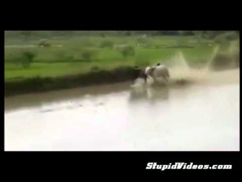 Water Skiing in Africa