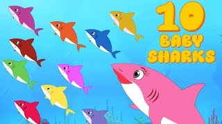 10 Baby Sharks   Number Song   Learn to count 1-10   Shark songs  by Fun For Kids TV