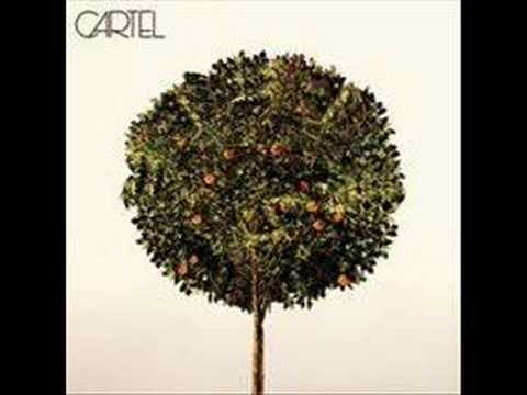 Cartel - Wasted