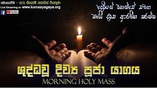 Morning Holy Mass - 30/06/2021