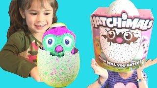 😍Trứng Tương Tác Hatchimal ( Phần 2)Nở Ra Chim Cánh Cụt Màu Hồng Cực Cute! Hatchimal Egg Hatching