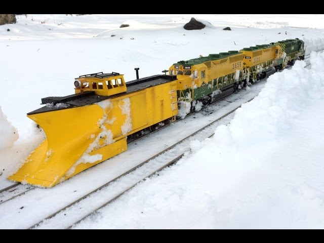 Reading RR Plow Train - G Scale