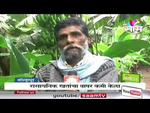 Ranjit Patil's banana success story