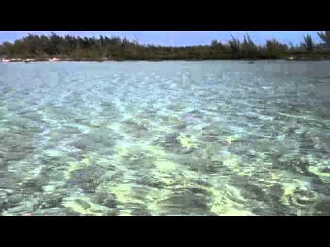 Bonefish Nassau Bahamas with Bonefish Simon
