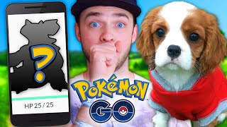 Pokemon GO GLITCH + RARE POKEMON HUNT!