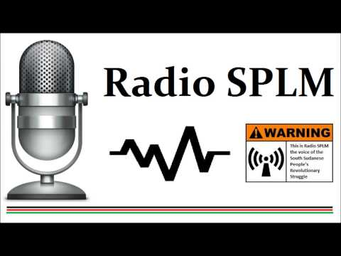 Emmanuel Puol   South Sudan Civil Society Interview on Peace 1608 2015