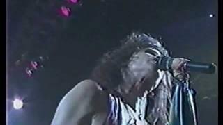 Watch Aerosmith Black Cherry video