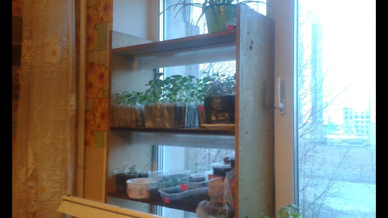 Полки для рассады на окна фото