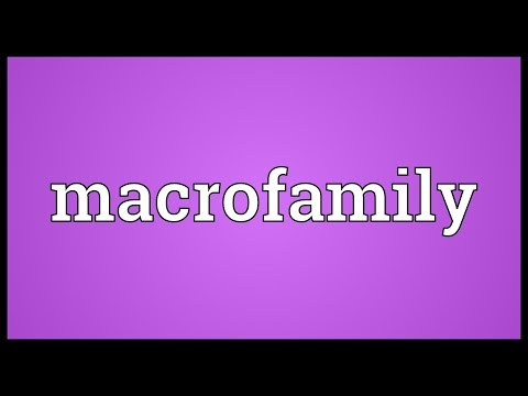 Header of Macrofamily