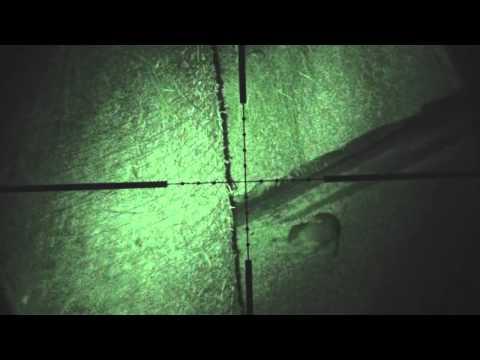 Rat shooting using night vision .177 HW100 air rifle by snypercat