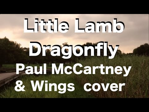 Paul McCartney - Little Lamb Dragonfly