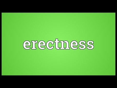 Header of erectness