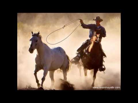 Shadows - Johnny Guitar