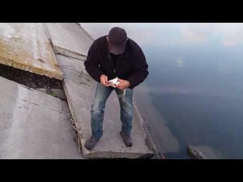 маяки донецкая область рыбалка