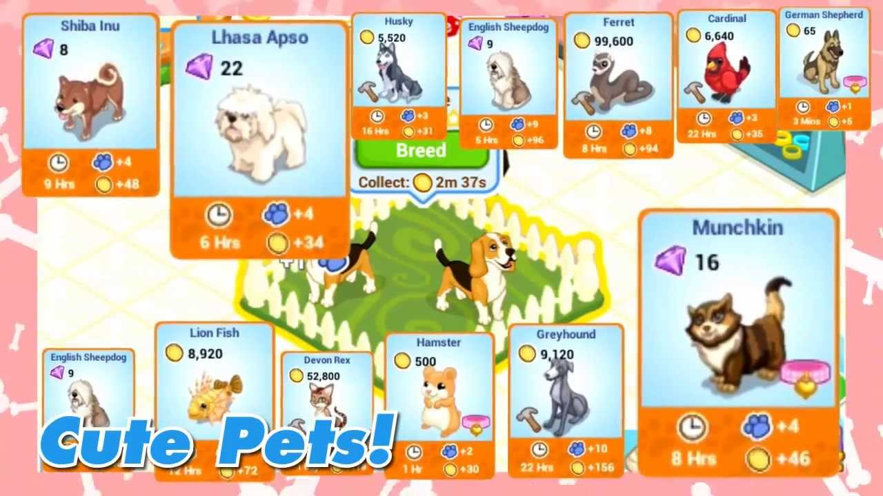 Bullmastiff Pet Shop Story Pet Shop Story