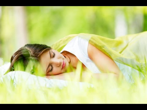 8 Hour Meditation Sleep Music: Deep Sleep Music, Meditation For Sleep, Calming Music ☯426