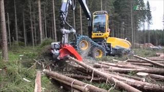 木を切る機械がSFっぽい♪