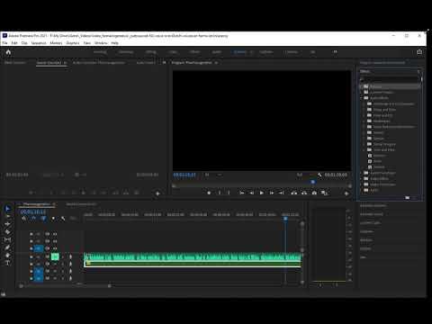 Premiere Pro bug
