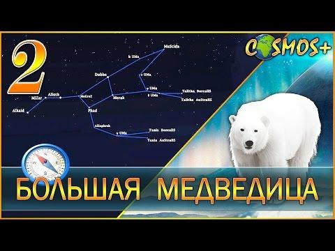 Большая Медведица. Всё о Большой медведице. (2 выпуск)