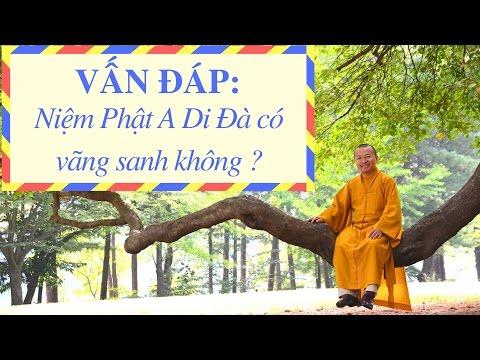 Vấn đáp: Niệm Phật A Đà vãng sanh
